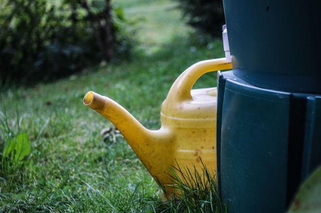 Beverage Close-up Day Focus On Foreground Freshness Green Color Water Watercan