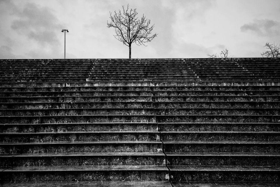 Structures Stairs Blackandwhite Black & White Rainy Days
