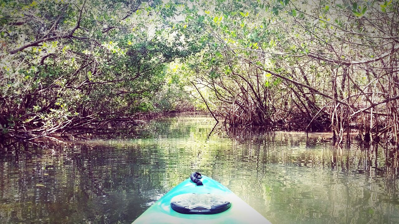 Relaxing Saturday EyeEm Nature Lover EyeEm Best Shots Water Reflections Enjoying Life Kayaking Check This Out Florida Hello World