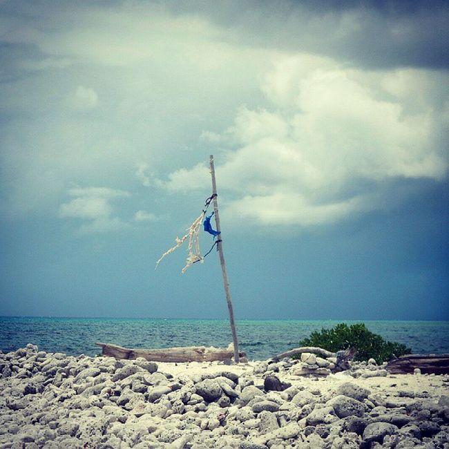 CastAway  Island Desertedisland Caribbean caymanislands flag