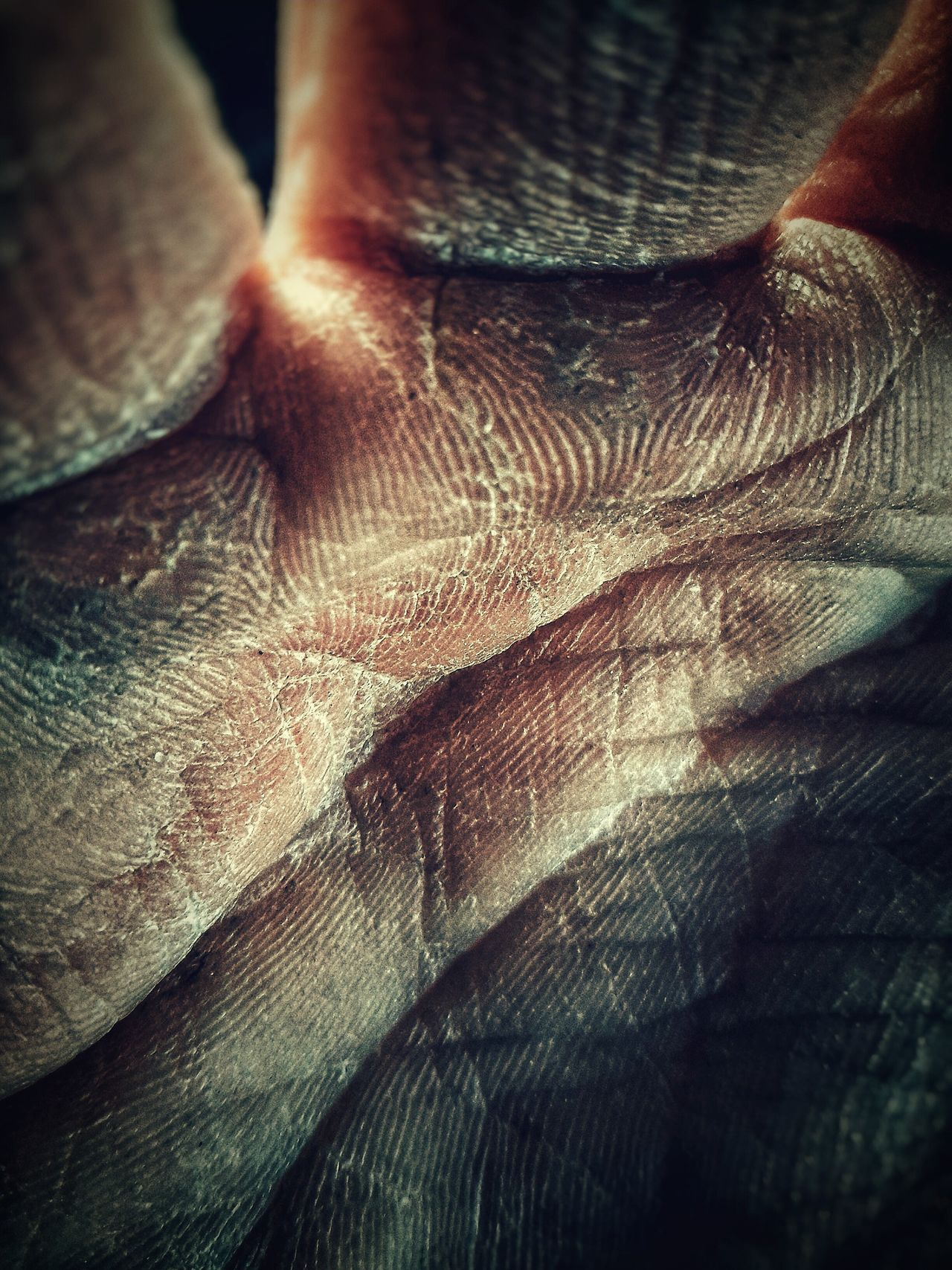 Close-up Real People One Person Human Skin One Man Only Human Body Part Indoors  Adults Only People Only Men Adult Day Hand Worker Fine Art Photography Mypointofview WeekOnEyeEm Calm Fine Art Photograhy My Hand  Full Frame Silhouette Winter Human Hand Mobile Editing