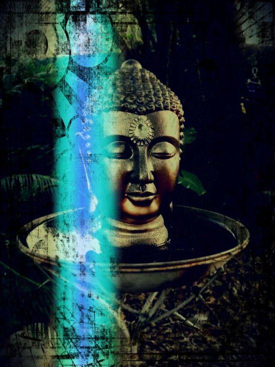 In My Garden Secret Garden My Garden Outside My Front Door Peaceful Giving Thanks Blessings Greater Understanding