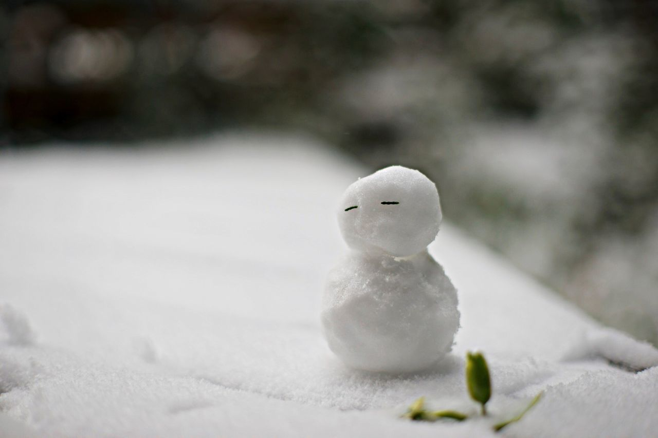 Beautiful stock photos of snowman, Day, Early Spring, Focus On Foreground, Green