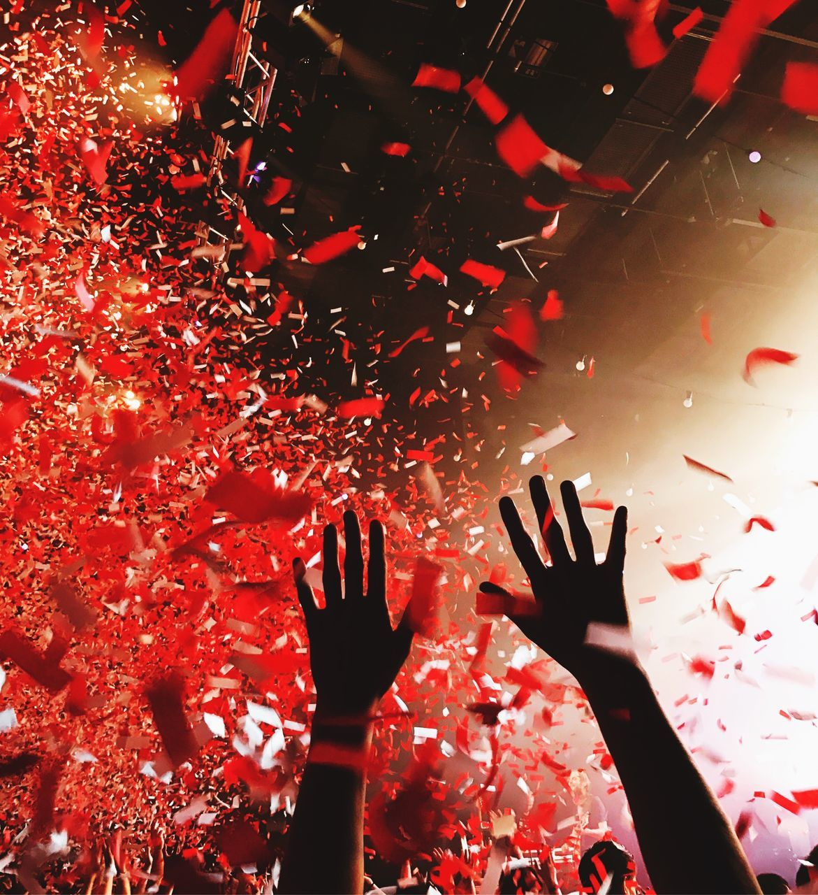confetti, human hand, red, celebration, human body part, night, people, adults only, indoors, nightlife, performance, only men, adult