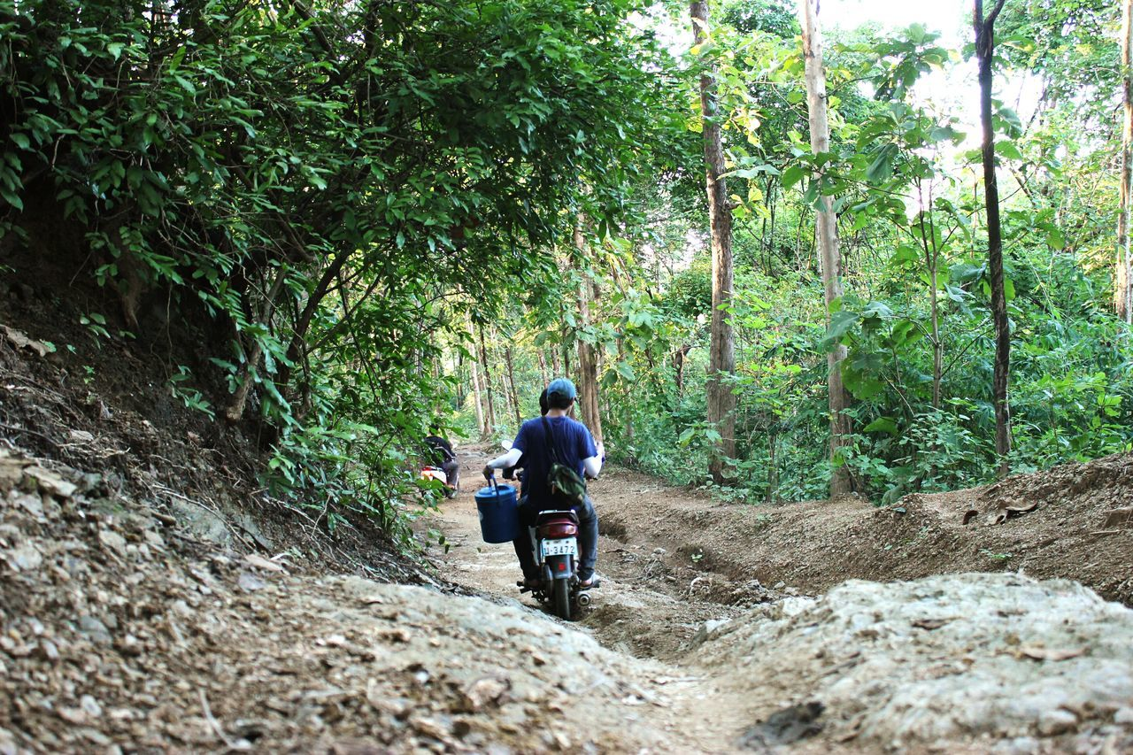 adventure, two people, real people, nature, forest, rear view, leisure activity, tree, men, hiking, walking, togetherness, backpack, day, travel, exploration, lifestyles, transportation, journey, women, outdoors, growth, sitting, friendship, helmet, full length, beauty in nature, biker, people, adult