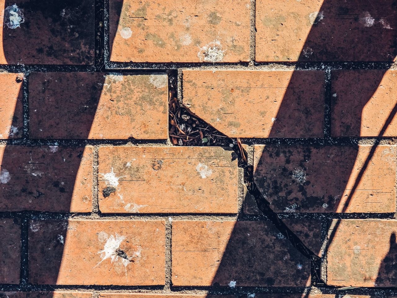 full frame, backgrounds, day, no people, outdoors, tile, close-up, architecture