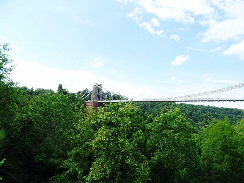 Clifton suspension bridge - Bristol Clifton Clifton Suspension Bridge Bridge Bristol Green Summer
