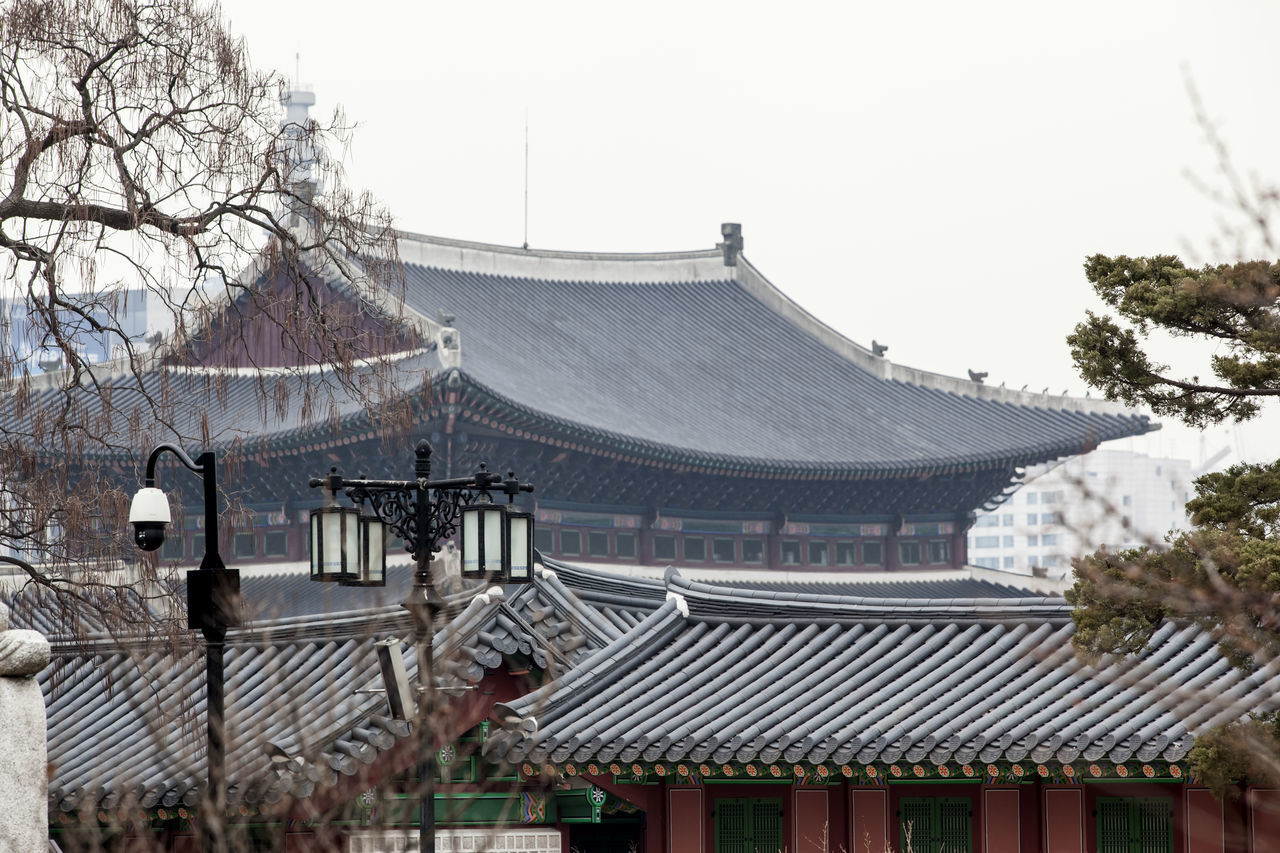 Architecture Building Exterior Built Structure Church Clear Sky Day Eaves Famous Place Gyungbok Palace Historic Buildings  Historical House Korea Traditional Architecture Low Angle View No People Outdoors Place Of Worship Religion Roof Sky Spirituality Temple - Building Tiled Roof  Travel Destinations Tree