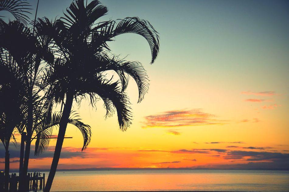 Ocean Sea And Sky Sunset Sea Seaview Sky