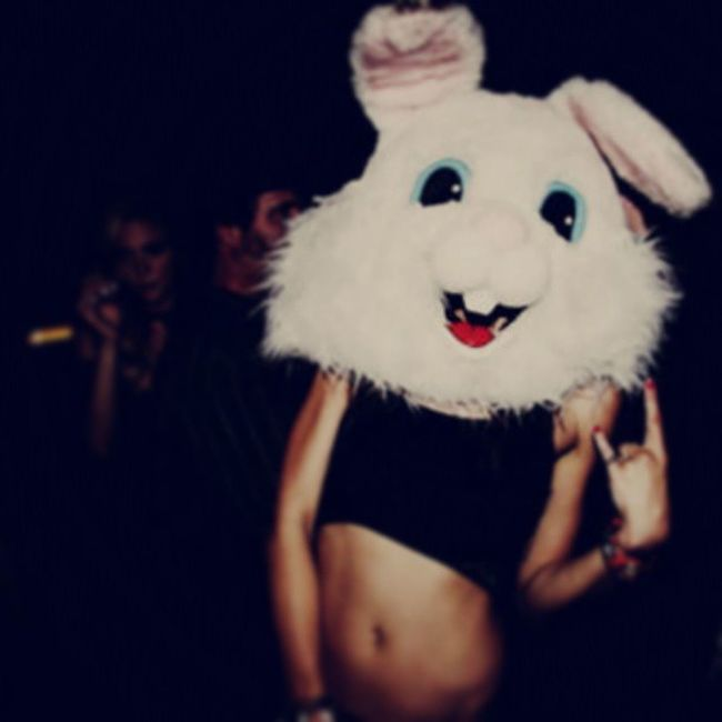 Party Holiday Rabbit Doe Cool Lol Moment Nigth PicOfTheDay Prety stone