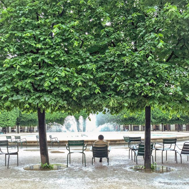 Rainy days! Bonjour Paris Being A Tourist Paris Parisweloveyou Photooftheday EyeEm Best Shots Paris ❤ Trees Rainy Days