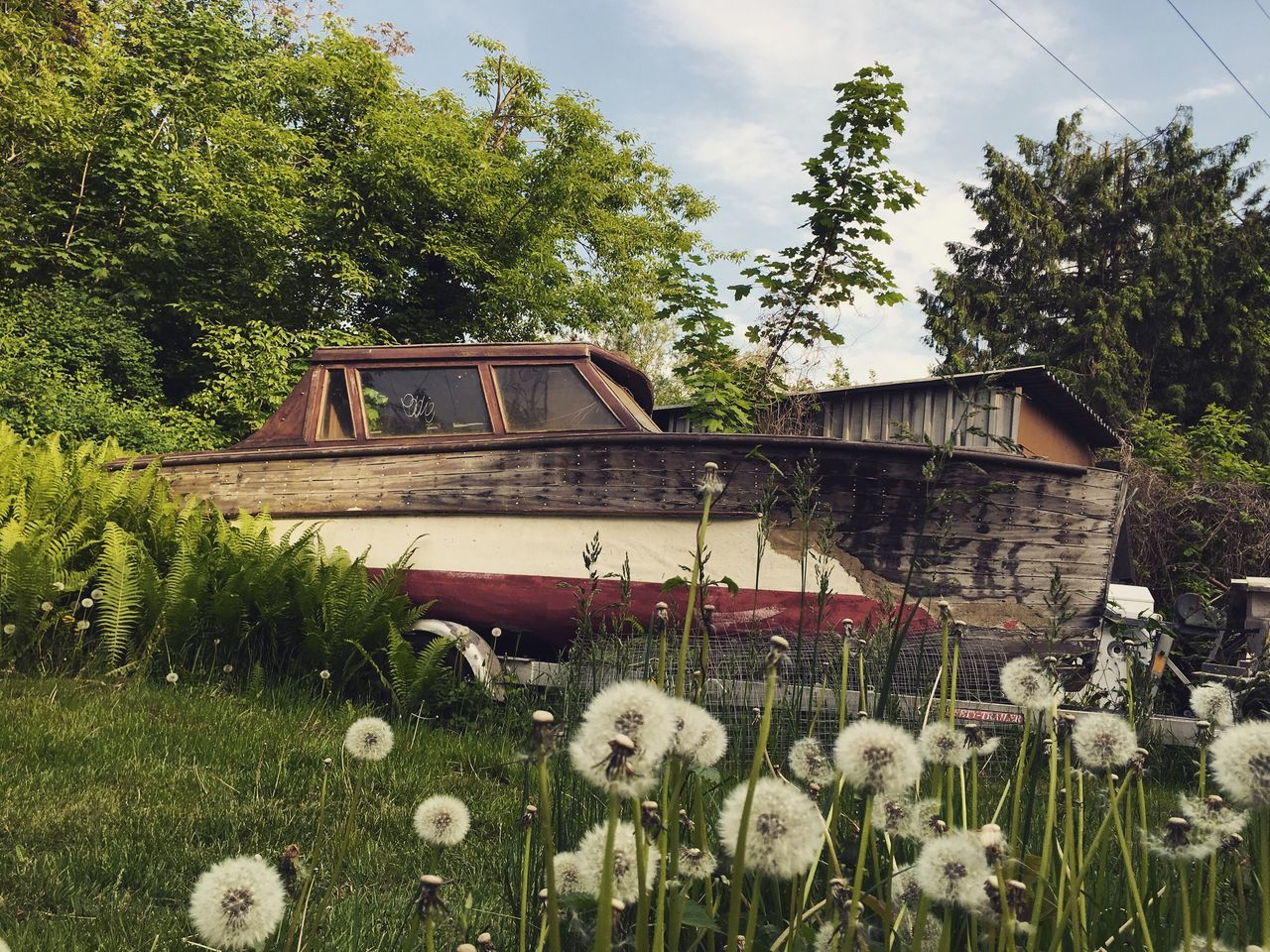Boat Grass The Great Outdoors - 2016 EyeEm Awards