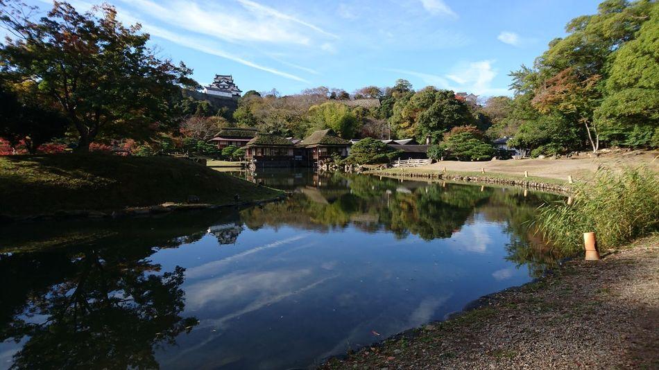 November2015 来年もどこかのお城見に行きたい♪彦根城 Hikone Castle Japanese Garden Japanese Castle Water Reflections Clouds And Sky Nature Hikone Travel Photography Enjoying Traveling Enjoying Life EyeEm Best Shots