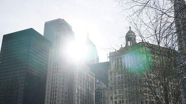 Wish we had spring back! Artofchi Igerschicago Chicago Winter Sony Sonya6000 SonyAlpha6000 Folkvibe Mobilefolk Instapic Digital Tigers Jj