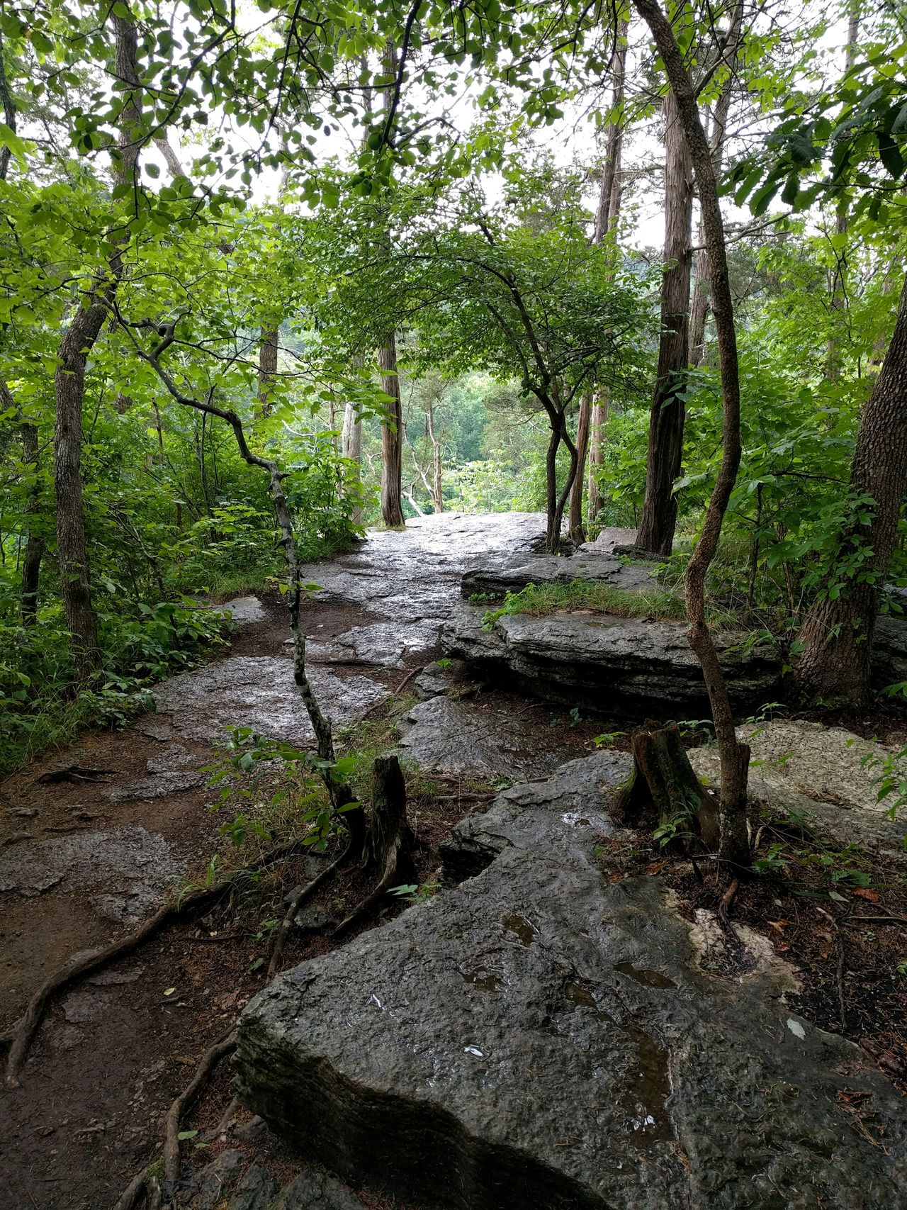 Raven Run Nature Sanctuary Hiking Outdoors Rainy Day Kentucky