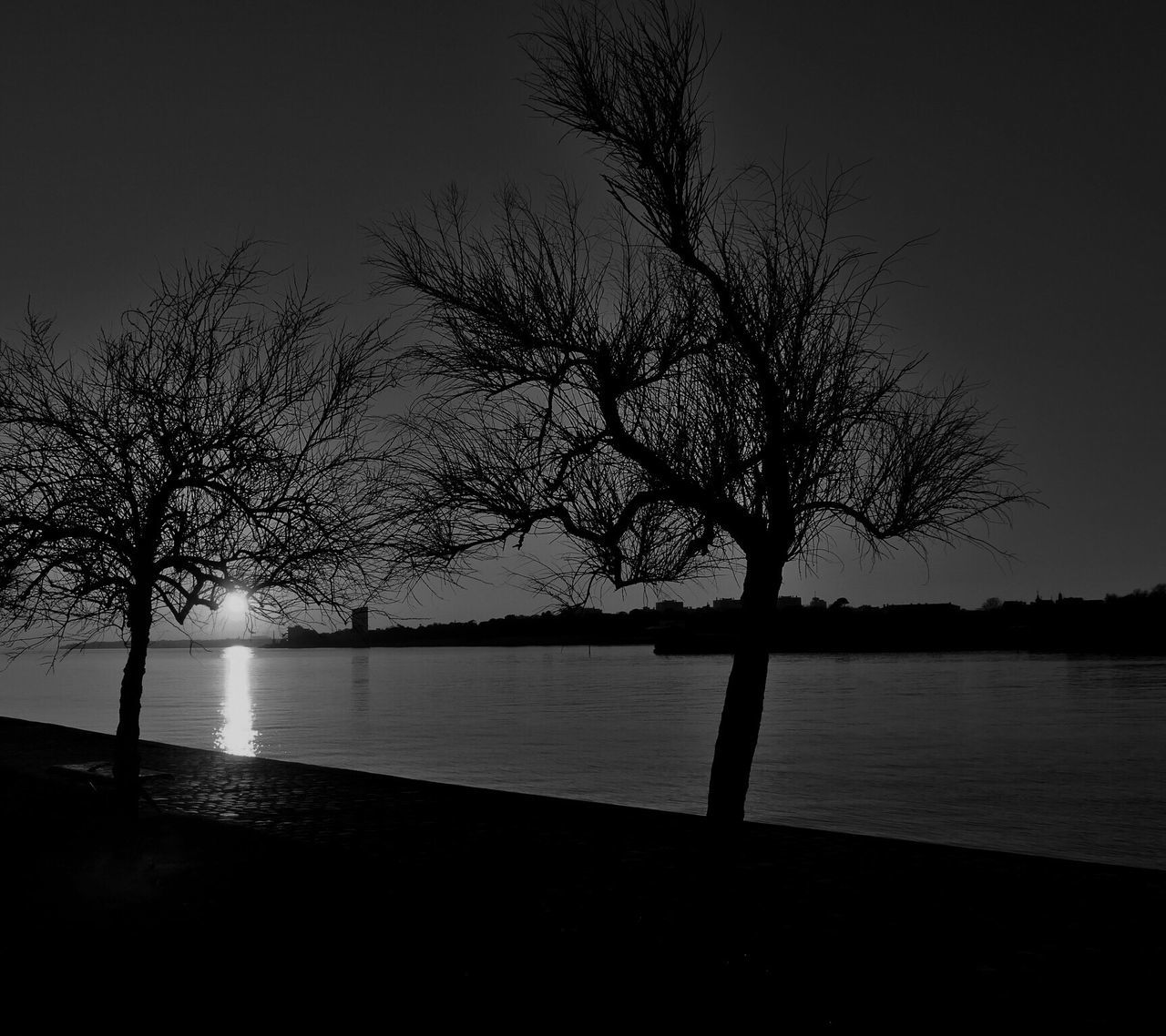 Blackandwhite Sunset La Rochelle, France Port Water Nature Beauty In Nature Tree Tranquil Scene Tranquility Scenics Bare Tree No People Sky Sea Silhouette Branch Outdoors Night Lone