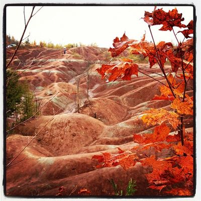 igharjit at Cheltenham Badlands by Harjit