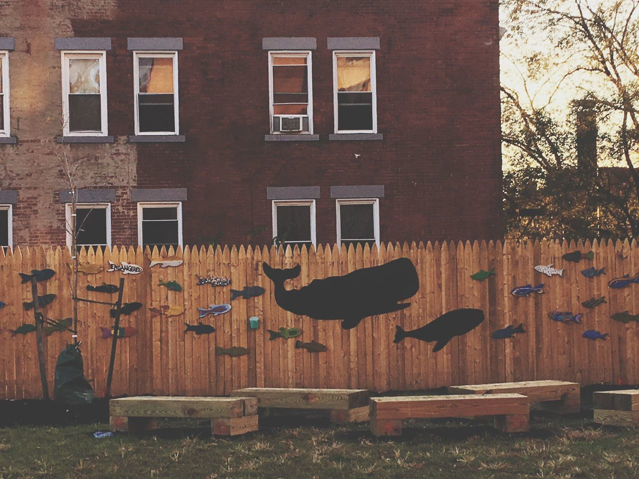 Pittsburgh, PA Built Structure No People Architecture Building Exterior Outdoors Clothesline Tree Day Pittsburgh Pennsylvania Whale Fish Fence Decoration Windows Street Urban Community Community Spirit Togetherness Neighborhood