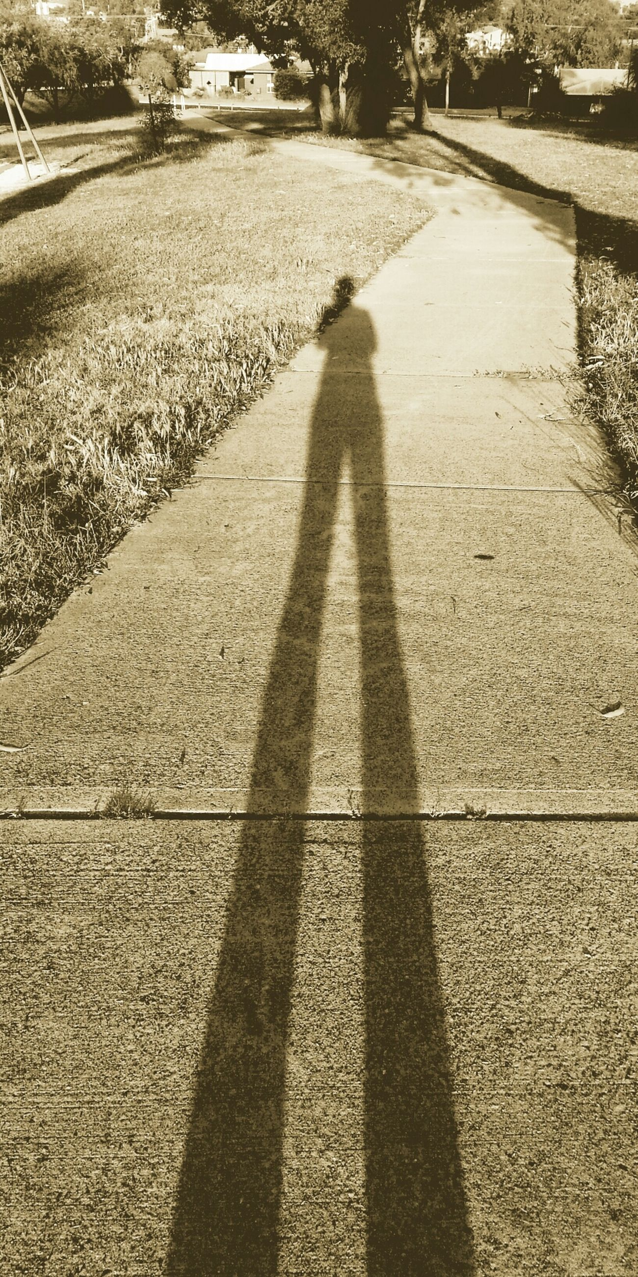 Light And Shadow Taking Photos Enjoying Life Longandtall