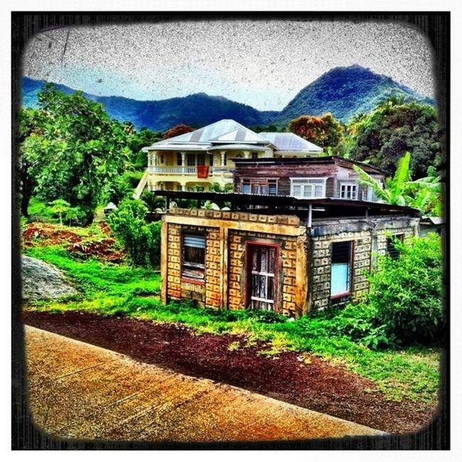 Islandlife Instagood Islandlivity Grenada Willis Skysnappers Mountain GrandÉtang