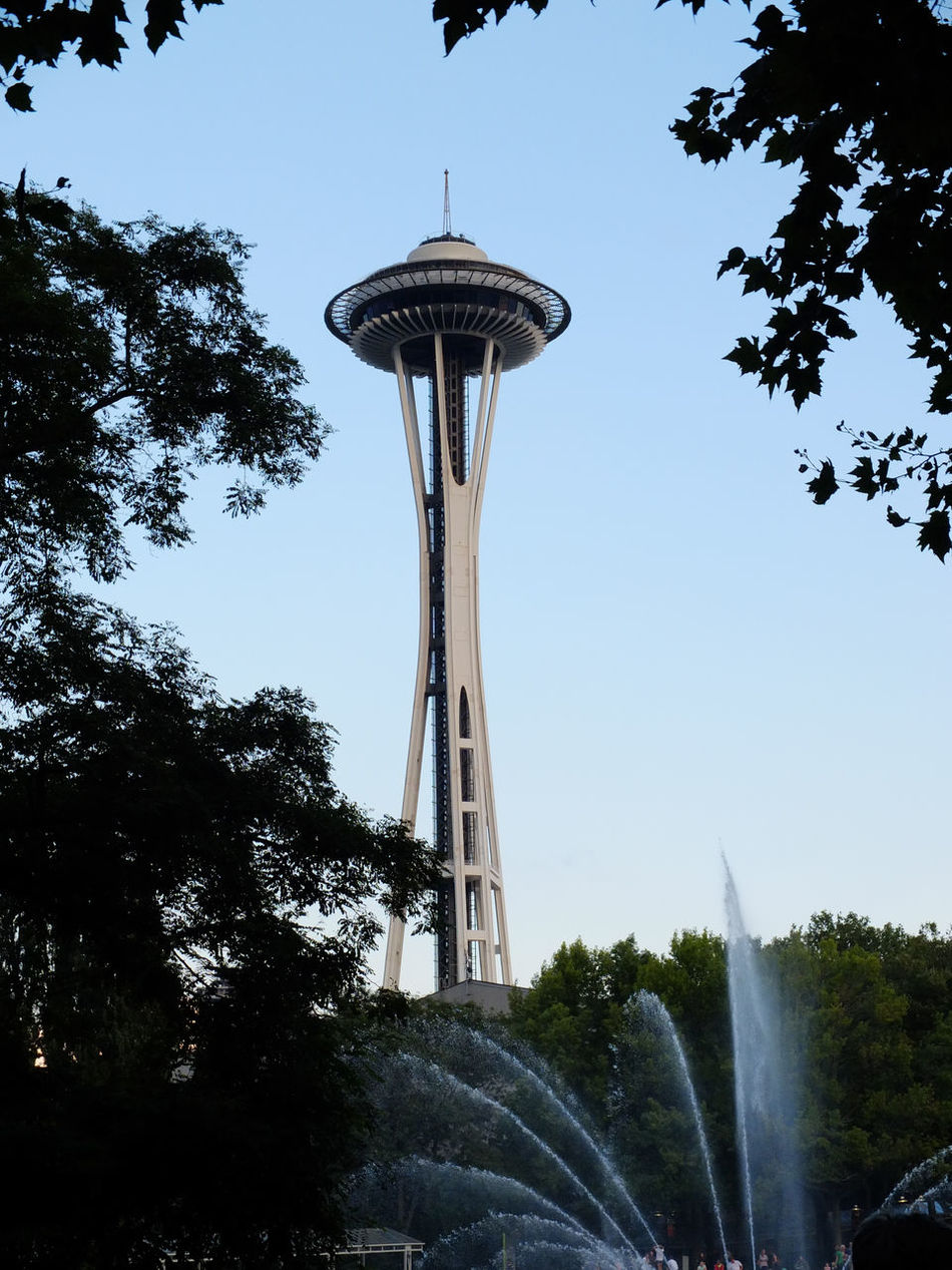 the space needle through the trees Fountain Framed Framed By Nature Landmarks Seattle Seeing The Sights Space Needle Through Trees Travel Trees Water