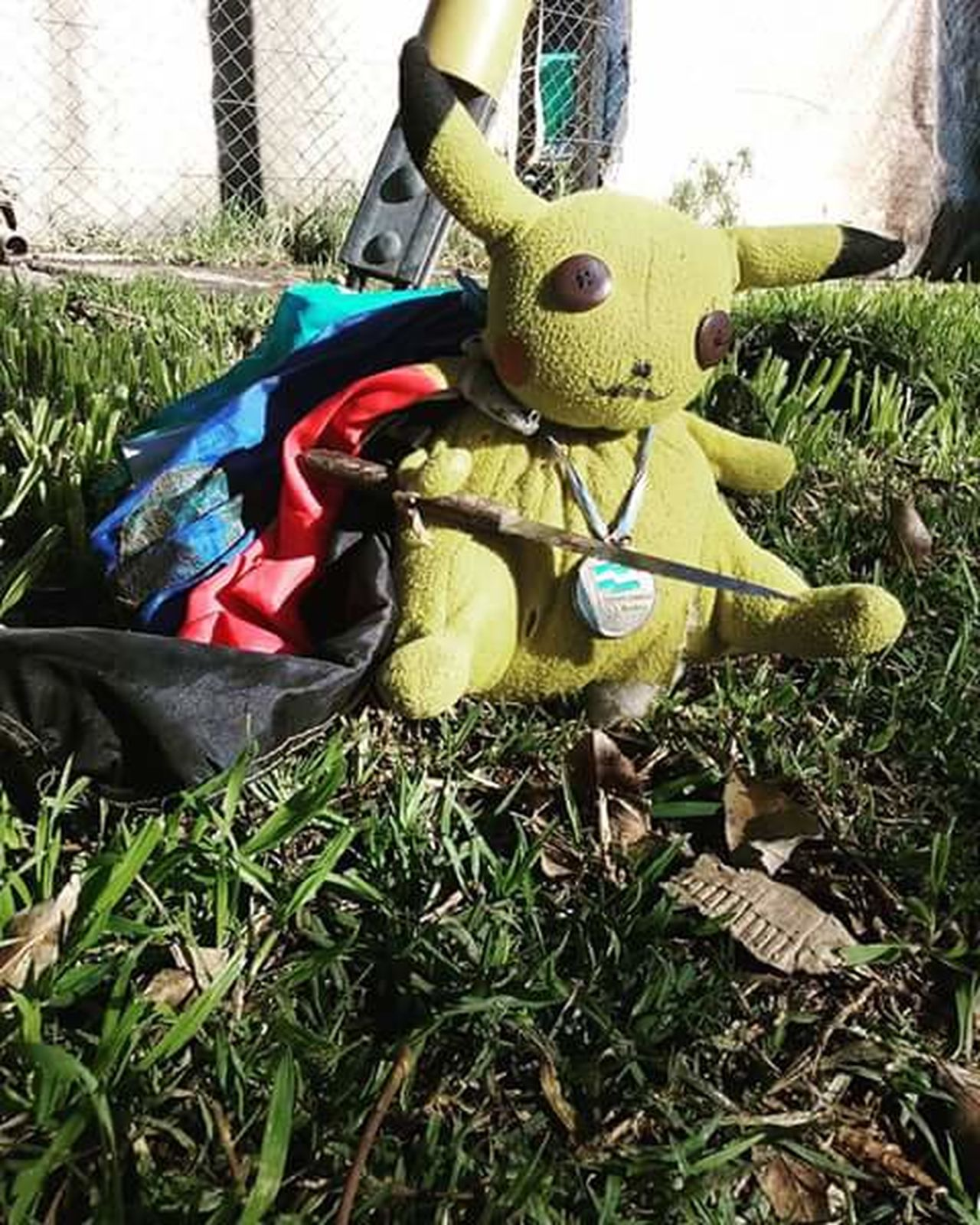 Day Outdoors No People Grass Close-up Pikachu Pokémon Pokemon Go Cuchillo Ladron