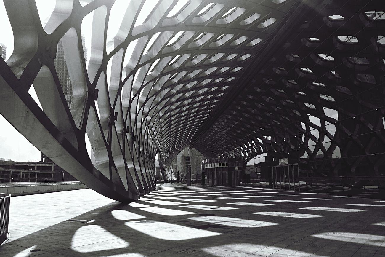 Built Structure Shenzhen Stadium Building