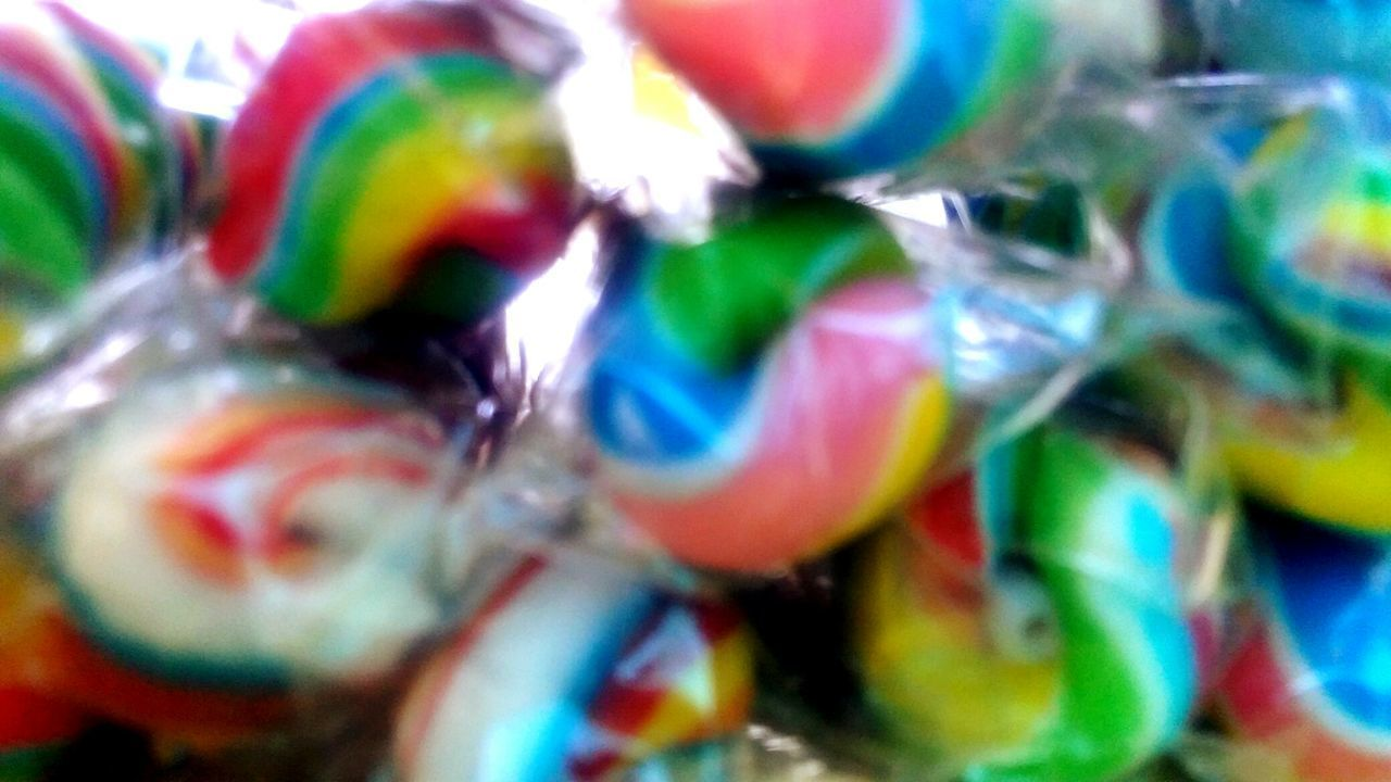 multi colored, close-up, no people, animal themes, one animal, indoors, day