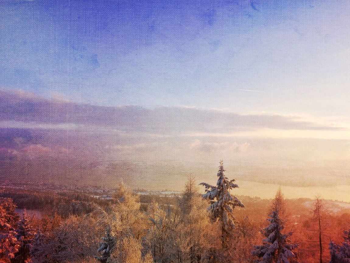 Winter dream Landscape_Collection Eyem Nature Lover Mexturesapp EyeEmSwiss Streamzoofamily