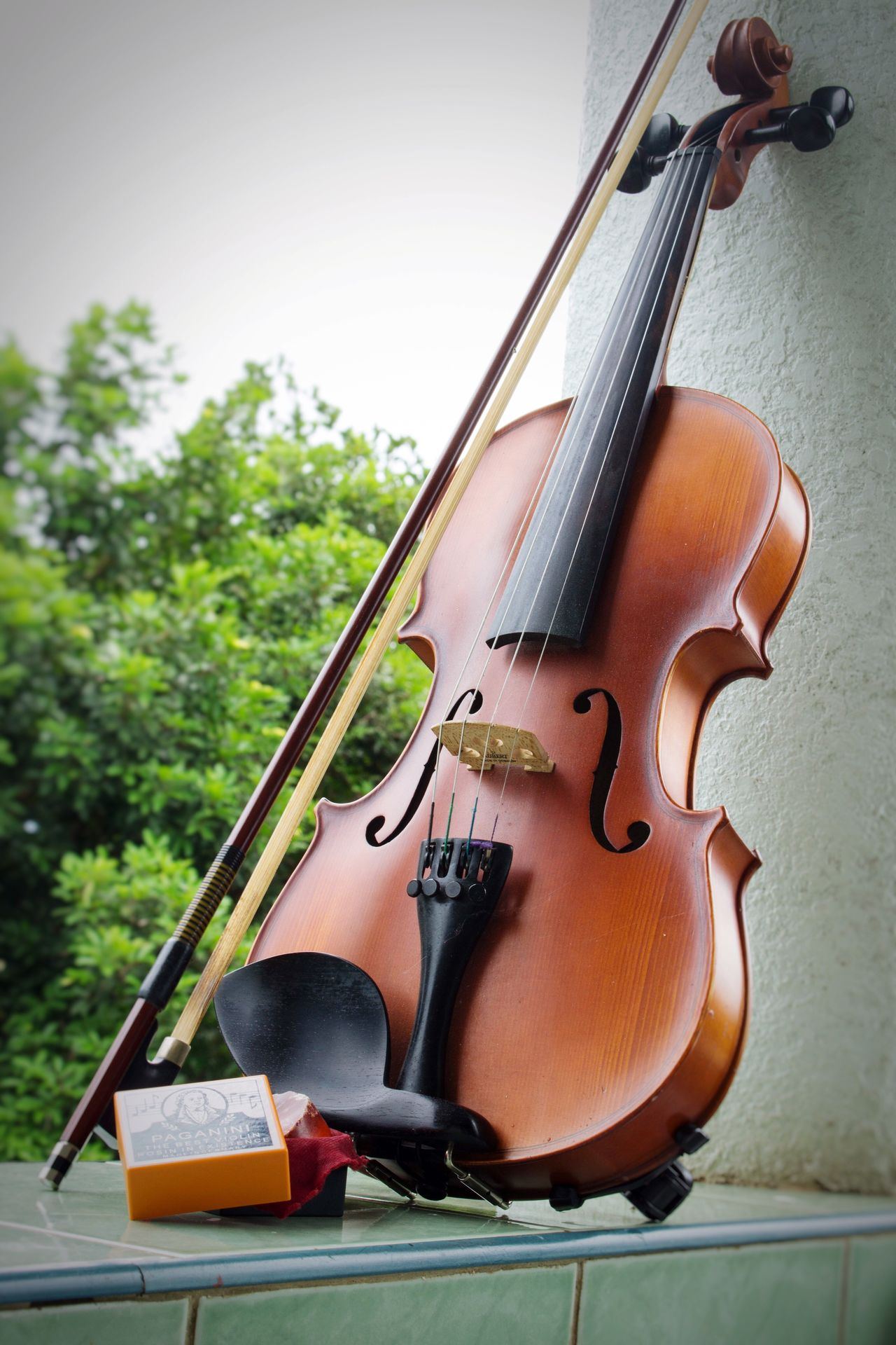 Violin Music Musician Music Photography  Instruments Sandner Germany MADE IN GERMANY BY EYEEM PHOTOS🇩🇪🔝 EyeEm Gallery Wood Classical
