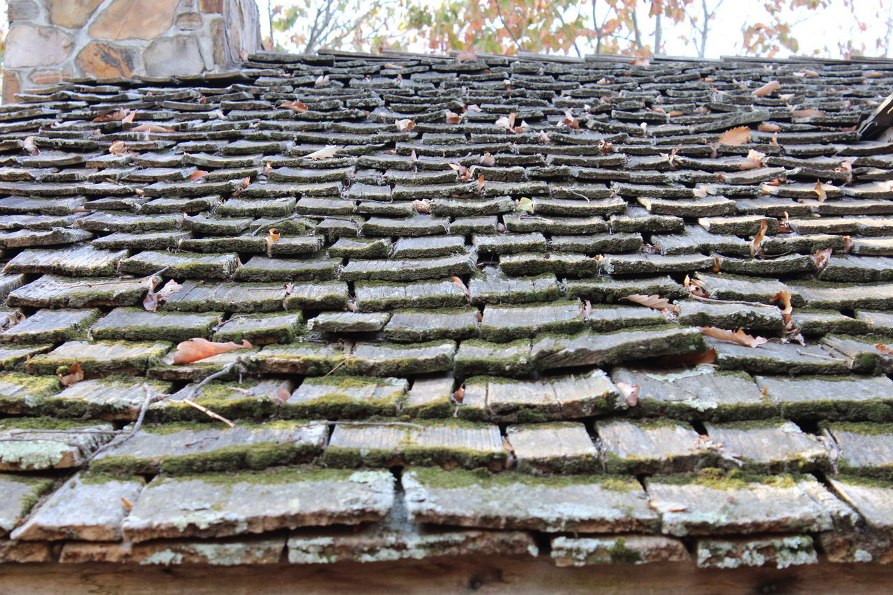 Architecture Built Structure Day Moss No People Outdoors Roof Rooftop Shingles Wood Shingles