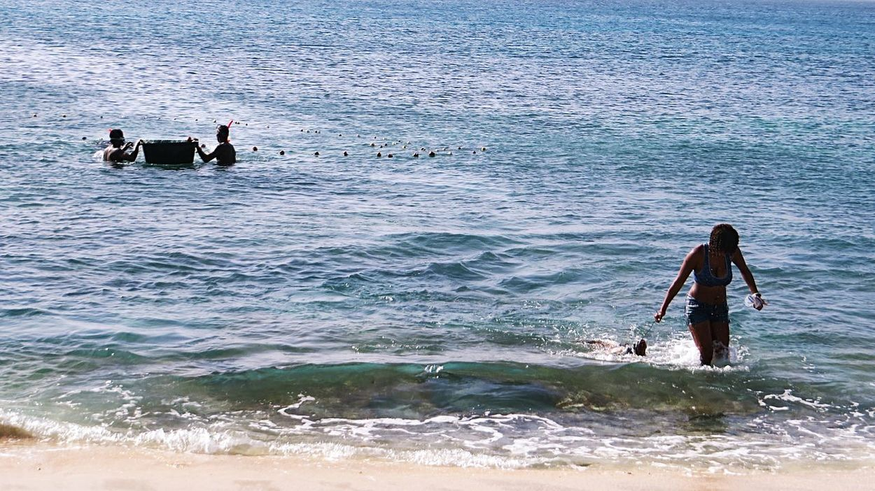 Bringing in the Catch Of The Day Traditional Fishing Waves, Ocean, Nature Blue Water_collection Fisherman Snorkeling Water Sea Ocean Marine Fishing Time Swimming Lifestyle Net Tradition Africa Fish Fishermen Fishes Nets Seaside Water Reflections Bucket