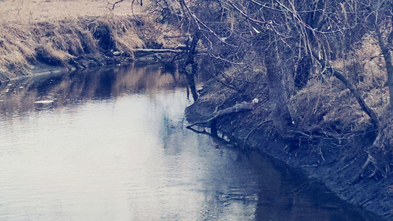 water, nature, waterfront, river, no people, beauty in nature, day, tranquility, outdoors, scenics, tree
