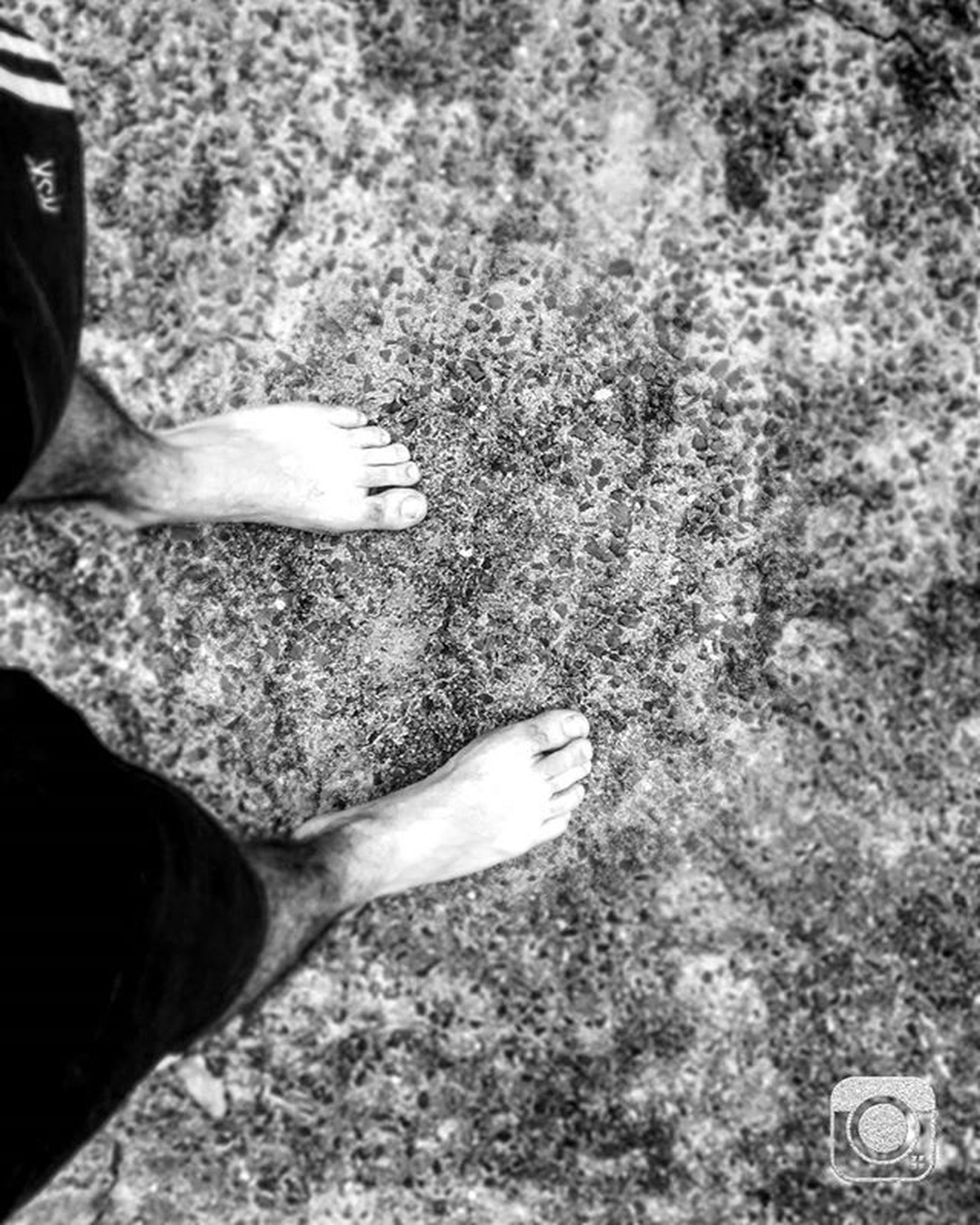 part of, close-up, person, low section, cropped, day, high angle view, outdoors, personal perspective, unrecognizable person, nature, lifestyles, sunlight, field, growth, shoe