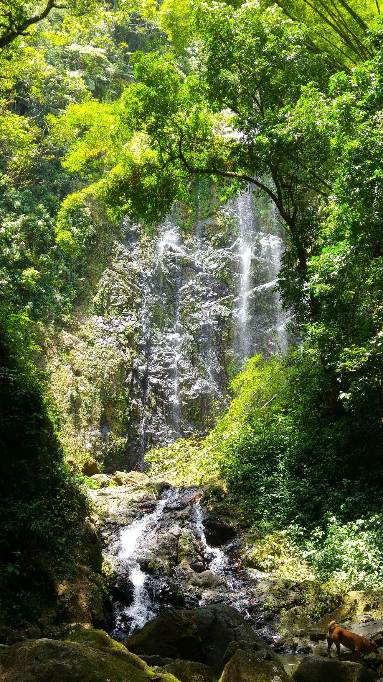 Beauty In Nature Cascade Love Puerto Rico Enjoying Life Sunday Trip