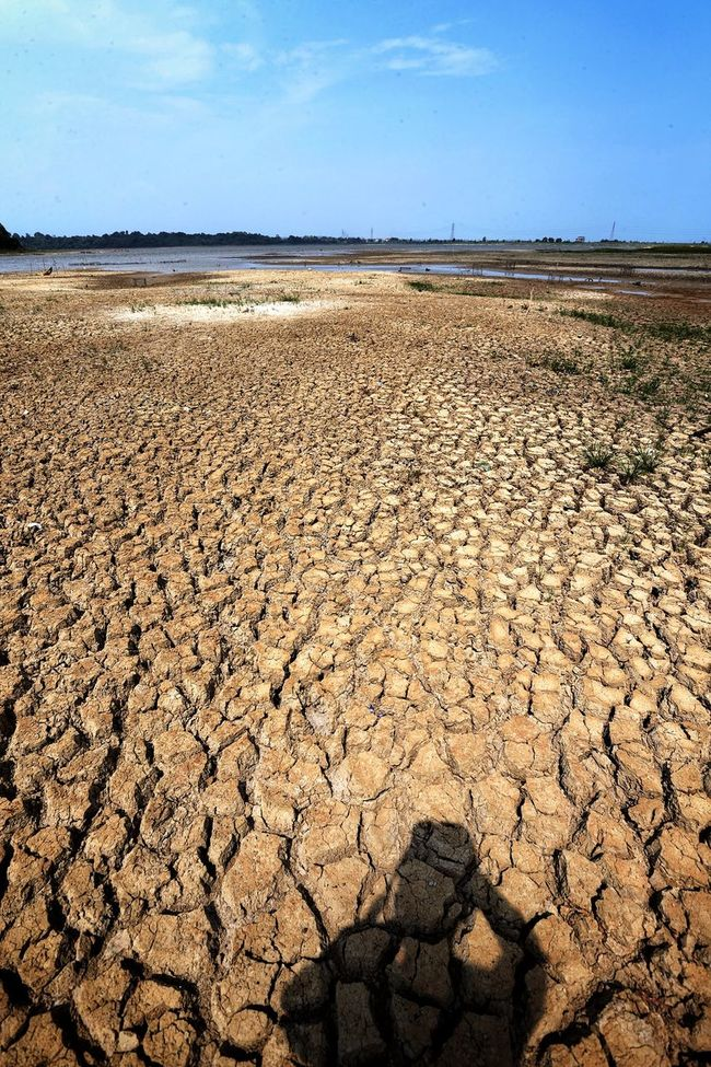 Drought EyeEm Best Shots INDONESIA Summer Drought Documentary Stock Photo Eye4photography  Nature_collection Lands Enjoying The Sun