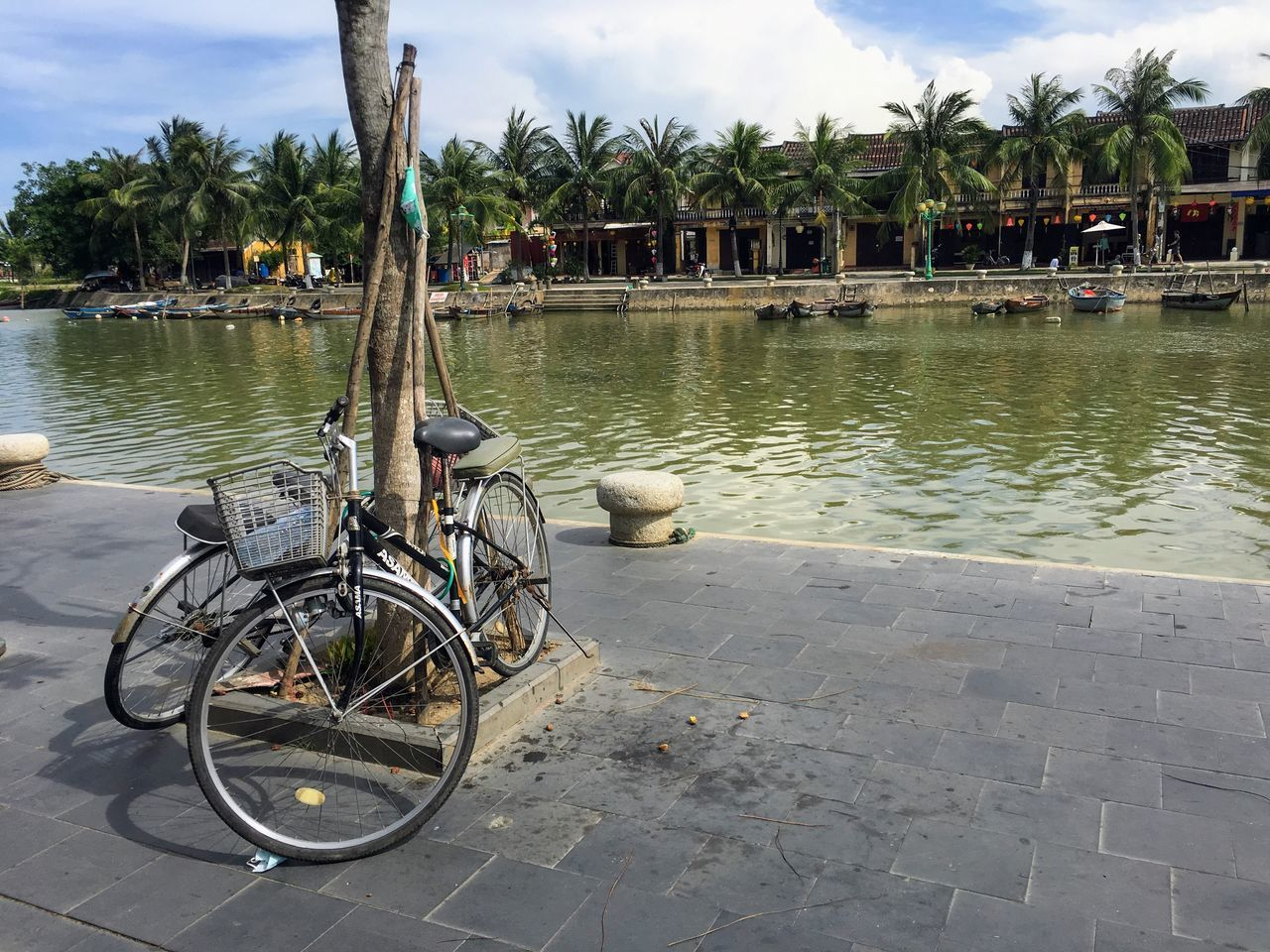 Architecture Bicycle Building Exterior Built Structure Canon SX280 Day Hoi An Nature No People Outdoors Palm Tree Sky Swimming Pool Transportation Tree Vietnam Water The Street Photographer - 2017 EyeEm Awards