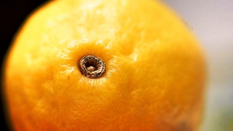 Click. Lemon Macro Sony A6000 Color Photography Eye4photography  EyeEm Masterclass Beauty Light And Shadow The Purist (no Edit, No Filter)