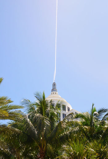 Architecture Blue Built Structure Clear Sky Green Growth Low Angle View Miami Palms Spire  The Architect - 2016 EyeEm Awards Tourism Travel Destinations Tree