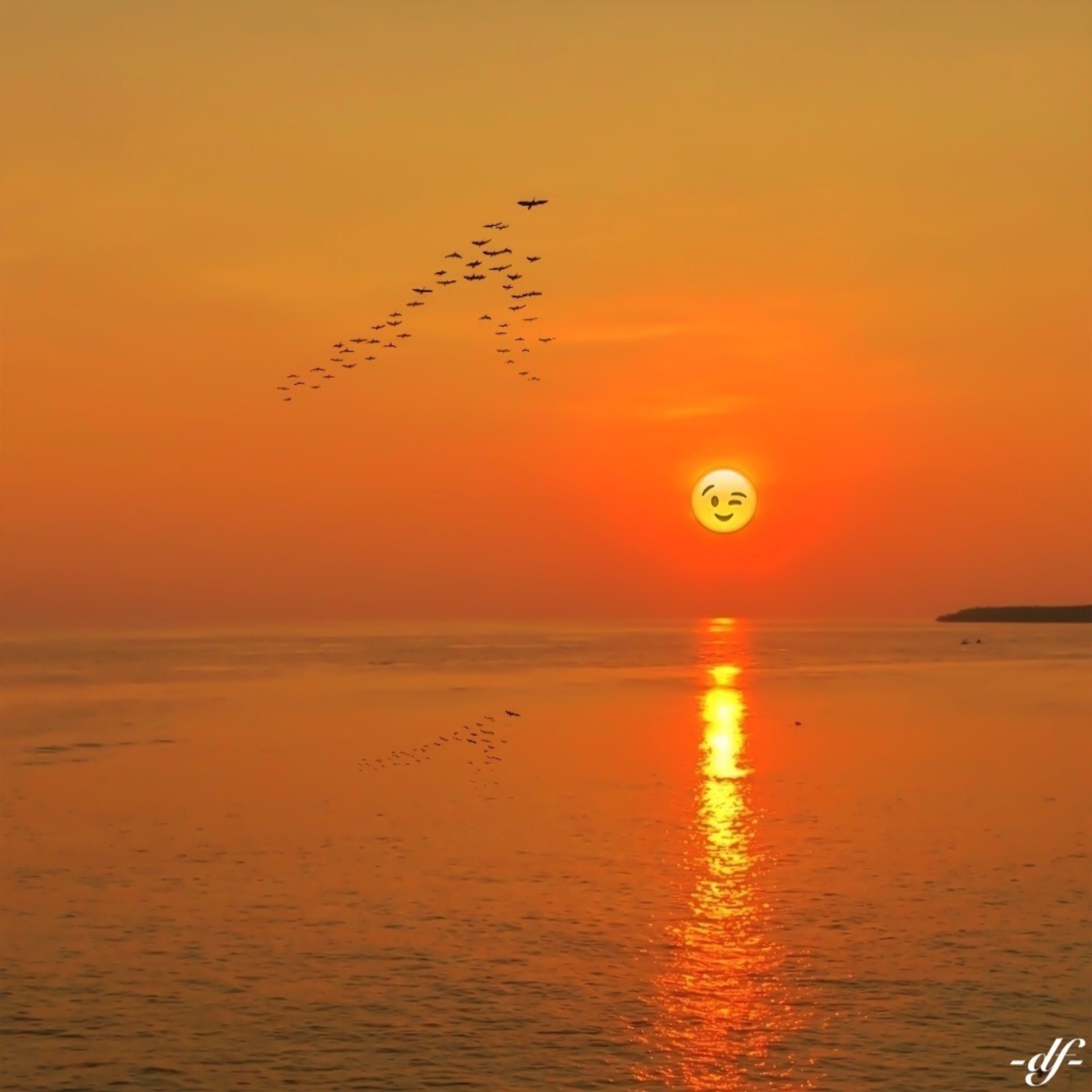 sunset, water, orange color, sea, scenics, horizon over water, sun, beauty in nature, tranquil scene, waterfront, tranquility, bird, idyllic, nature, reflection, sky, flying, rippled, animal themes, silhouette
