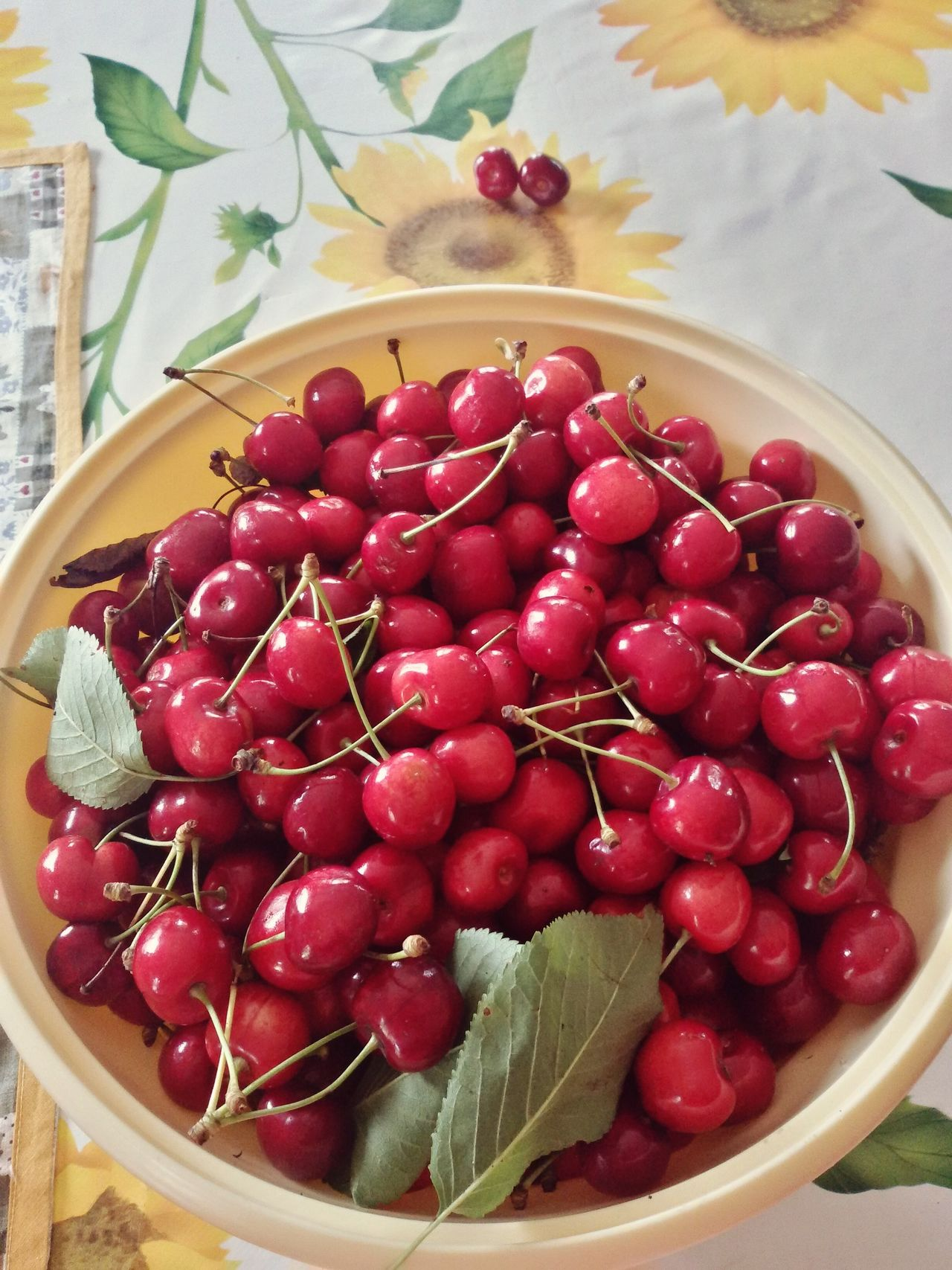 Live For The Story Cherries Fruit Healthy Eating Red Food Summer Food Summer