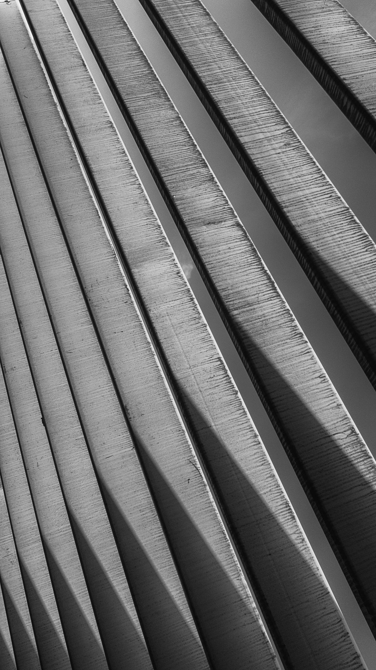 I amsterdam I Amsterdam Pivotal Ideas Eye Em Photo Dramatic Angles Architecture_collection Architecture Details Architecturelovers Abstract Eyeem Market From My Point Of View Abstractions In BlackandWhite EyeEm Gallery Amsterdamthroughmycamera Urban Art Amsterdam Black And White Black And White Photography Black And White Collection  Black & White Amsterdam City Openbare Bibliotheek Amsterdam Blackandwhite Photography light and reflection Pergola Monochrome Photography Beautifully Organized Welcome To Black The Architect - 2017 EyeEm Awards