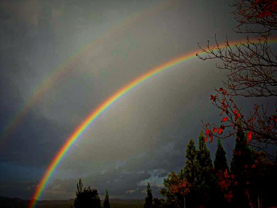 Kimitsu EyeEm Japan Nature 虹