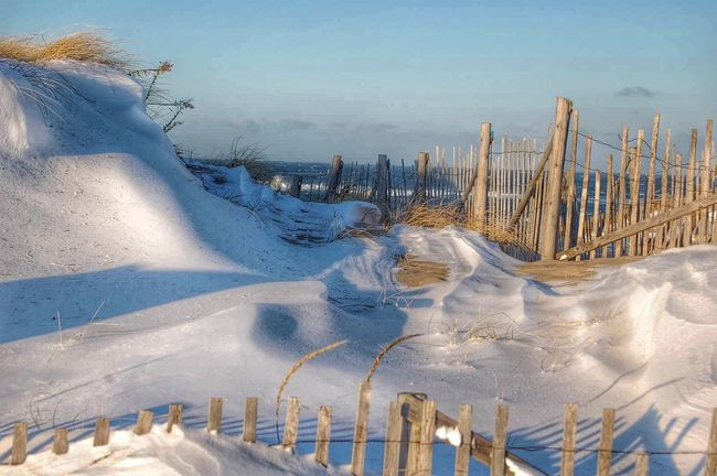 Winter Massachusetts Beach Nature Nature_collection Snow Taking Photos