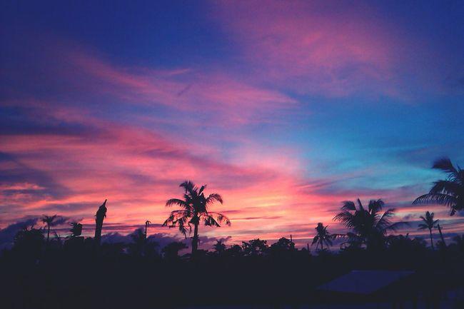 Sunset #sun #clouds #skylovers #sky #nature #beautifulinnature #naturalbeauty #photography #landscape Sunsetlover Sunsetphotographs Sunset✨trees✨ Sunset_captures