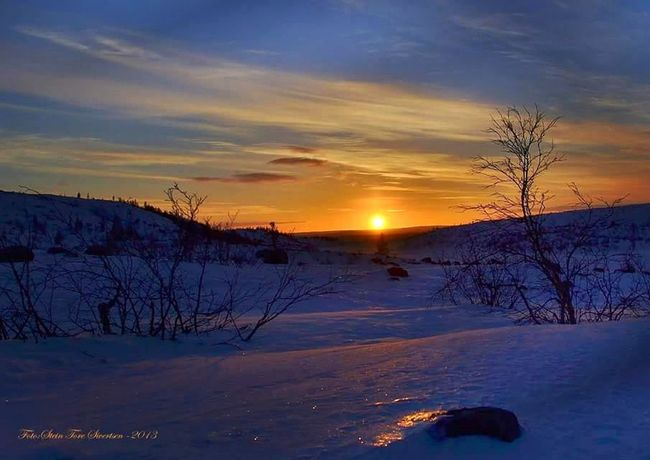 The sun is shining after being away from me 8 weeks Nature Photography EyeEm Best Shots Colors Bestfoto EyeEm Nature Lover First Eyeem Photo Lanscape Photography Northennorway Hello World Norway Neiden North Of Norway Landscapes Sunshine