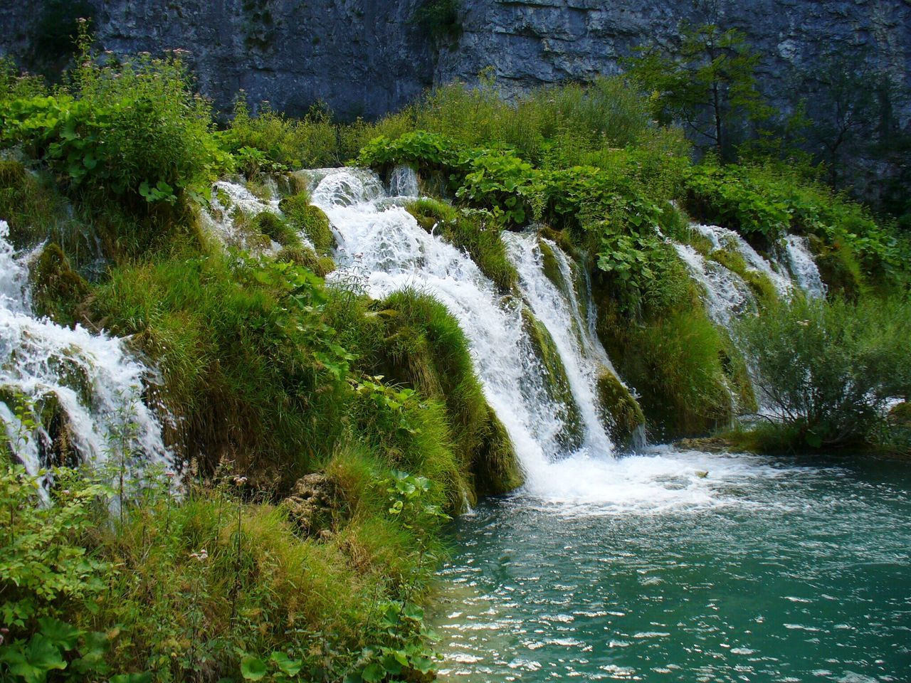 Water Nature Waterfall Beauty In Nature Scenics Forest Idyllic Plitvice National Park Plitvice Lakes National Park Croatia Lake Grass Moss Motion Flowing Water Tranquility Travel Destinations Outdoors Rock - Object No People Flowing Tree Power In Nature Tranquil Scene Vacations