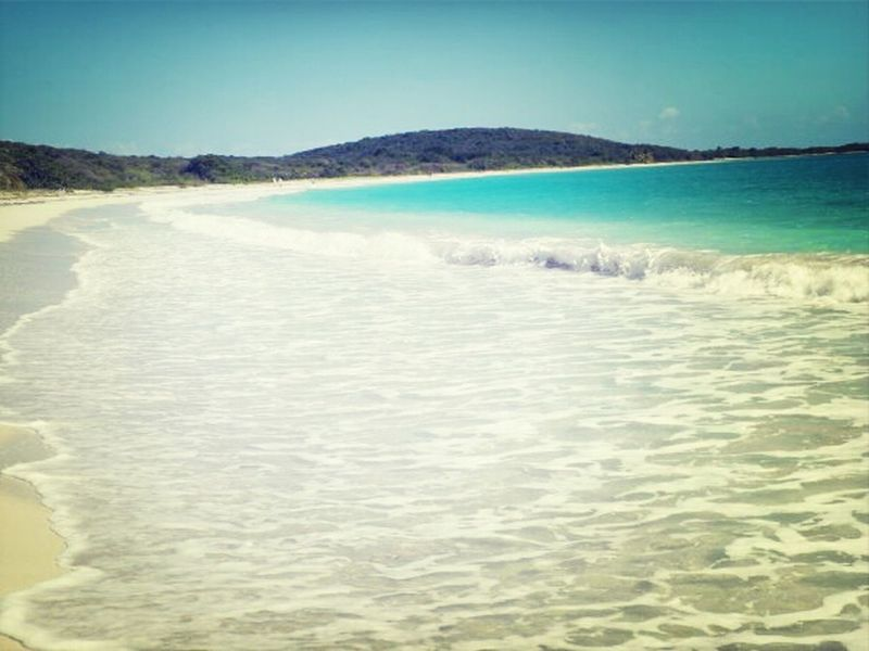 Life Is A Beach blue beach, Vieques... Glutton For Punishment
