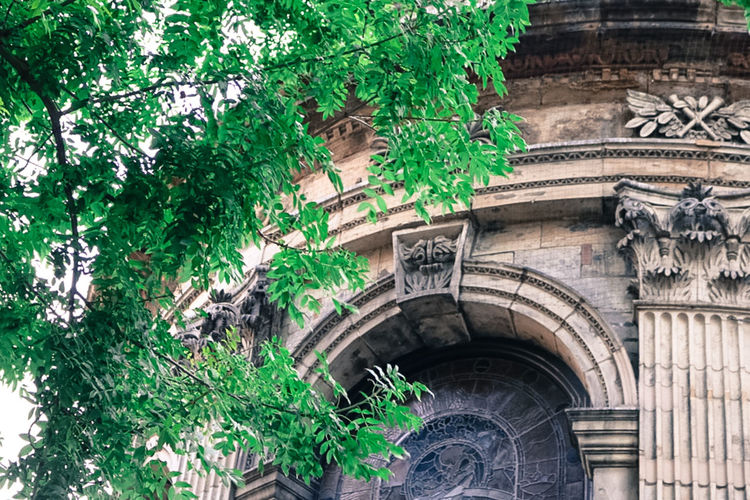 Arch Architecture Branch Building Exterior Built Structure Church Creativity Creeper Day Green Color Growth Low Angle View Nature No People Outdoors Overgrown Plant Stone Material