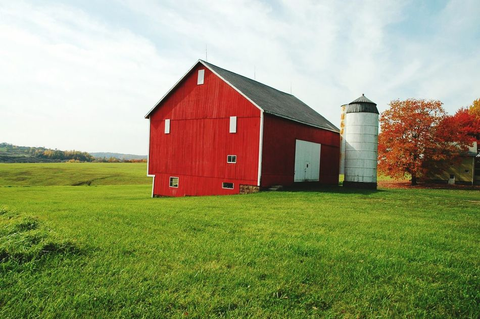 Beautiful stock photos of farm, Architecture, Barn, Building Exterior, Built Structure